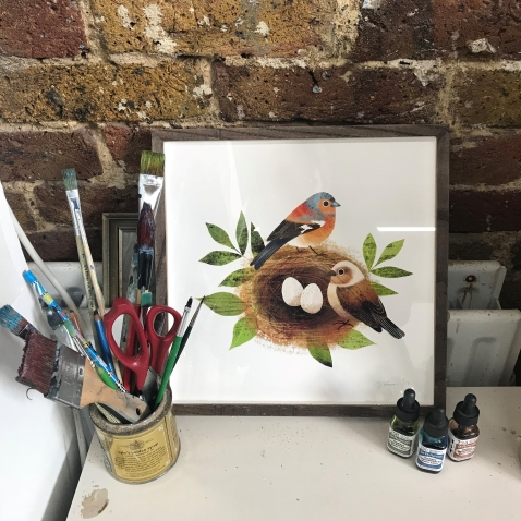 framed pic of birds